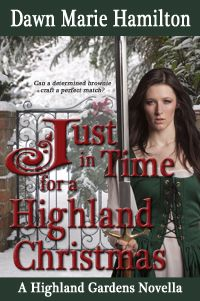"""Read """"Just in Time for a Highland Christmas"""" by Dawn Marie Hamilton available from Rakuten Kobo. Can a determined brownie craft a perfect match in time for Christmas? From 2013 Golden Heart® paranormal finalist Dawn M. Romance Authors, Romance Books, Twist Of Fate, Love Box, Book Names, Book Categories, Popular Books, Bond Street, Christmas Books"""