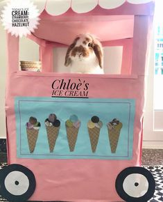 The cutest #bunnies & #rabbits are at Bunny Supply Co! We specialize in popular high quality supplies, products, & accessories for pet bunnies and pet rabbits! Check us out! #bunnysupplyco