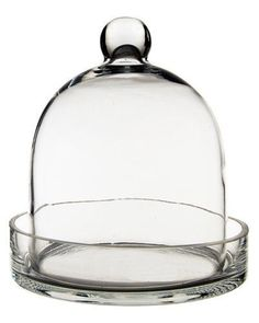 Glass cloche terrarium bell jars with bases are extremely popular choices for fairy tale themed wedding centerpieces and glass displays for art, antiques, roses and other plants. Large Glass Terrarium, Terrarium Jar, Terrarium Containers, Terrariums, Terrarium Ideas, Urn Planters, Wood Planter Box, Ceramic Planters, Plastic Planter