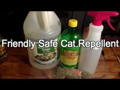 Friendly (but Effective) Cat Repellent : 5 Steps (with Pictures)