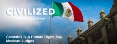 #Cannabis Is A Human Right, Say Mexican Judges   http://rbl.ms/1PsIWN3  #MME #cannabis #marijuana