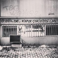 #DirenGeziParki