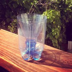 Shoo, Fly! Repurpose a plastic bottle into a fly and wasp catcher that really keeps patios and decks free of pests.