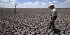Climate Change 'Very Evident,' So Let's Deal With It, World Panel Says