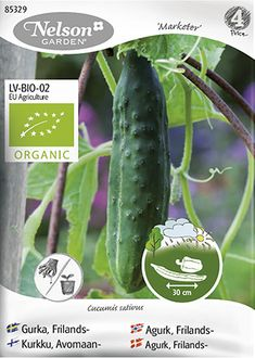Frisk och härdig gurka som ger riklig skörd av långa mörkgröna frukter med ett något knottrigt skal. Denna sort är ljuvlig att äta färsk, direkt från de egna odlingarna.