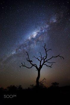 Afrika se Nag Lug by Xenedis Photography on 500px