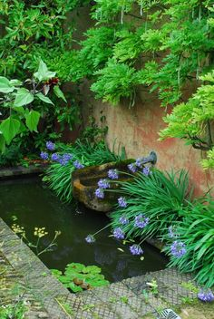 14 Beauty Ideas Of Water Garden – Natural Flower For Backyard Spring Project - Bored Fast Food Patio Garden, Plants, Garden, Water Features In The Garden, Ponds Backyard, Outdoor Gardens, Garden Pool, Garden Features, Garden Fountains