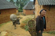 On the edge - Vietnam