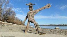 driftwood artworks by tamas kanya
