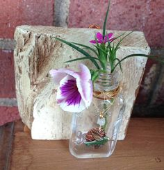 Wall Bud Vase Hanging or Desk Table Accent Barn Wood Antique Glass Medicine Bottle Humming Bird Upcycled Jewelry