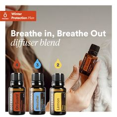 Diffusing oils is a great way to help our immune system! Plus it smells awesome! Essential Oils For Breathing, What Are Essential Oils, Essential Oil Uses, Breathe Essential Oil, Doterra Blends, Doterra Essential Oils, Essential Oil Diffuser Blends, Osho, Essential Oil Blends