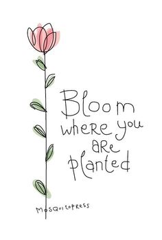 Flower quotes, my flower, worship quotes, plant tattoo, bloom where you are Peace Quotes, Words Quotes, Wise Words, Sayings, Cute Quotes, Happy Quotes, Positive Quotes, Hand Lettering Quotes, Calligraphy Quotes