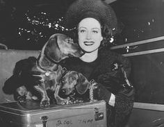 {Joan Crawford with her two dachshunds} best kind of luggage! :D