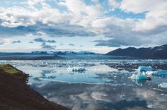 Top 5 Environmental Victories of 2016