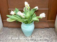 Wunderschöne gefranste Tulpen Friday, Plants, Crop Rotation, Companion Planting, Daffodils, Natural Garden, Shade Perennials, Fringes, Tulips