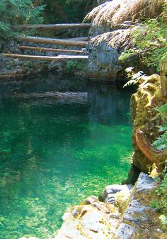 8 great NW Summer Swimming Holes just outside Portland [Opal Pool pictured]. www.escherpe.com
