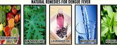 home-remedies-dengue