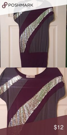 Sequined Tunic Dark purple, Gray and Silver-Sequined tunic Vintage Havana Tops Tunics