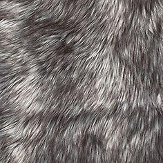 Siberian Grey Fox