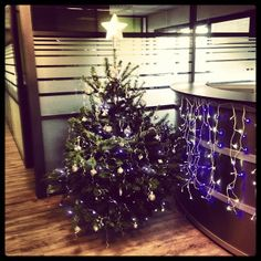 We made our Christmas Tree at ObvieLine !!
