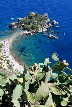 #Messina - Ioren Napoli Gianfranco - #Taormina, Isola Bella. Messina - Taormina, The Isola Bella. #Italy