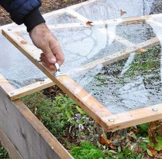 From Raised Bed to Cold Frame in Minutes - This post looks at the benefits of a cold frame and shows you our clever design for transforming a raised bed into a…