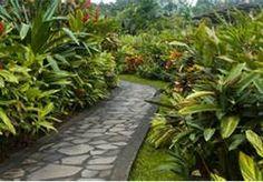 back yard walks - Bing Images