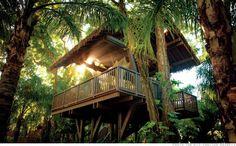 tree houses by ritz carlton in dorado beach, puerto rico