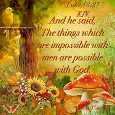 And he said, The things which are impossible with men are possible with God.  ~Luke 18:27~ KJV