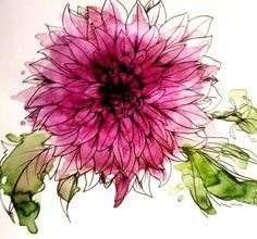 watercolor flower - dahlia? deep mauve color, ink drawing with watercolor wash