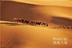 5 most beautiful deserts in China Badain Jaran Desert in Inner Mongolia Taklimakan Desert in Xinjiang Gurbantunggut Desert in Xinjiang Singing Sand Dunes and Crescent Moon Spring in Gansu Shapotou Desert in Ningxia