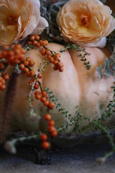 Soft Hues of a Cinderella Pumpkin, David Austen Roses, Apricot-colored Berries & Sprigs of Thyme - French Kissed~❥ Autumn Decorating, Pumpkin Decorating, Decorating Ideas, David Austen Roses, Just Peachy, Thanksgiving Decorations, Fall Decorations, Happy Thanksgiving, Fall Harvest