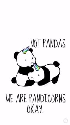 We are pandacorns not pandas Unicorn Quotes, Unicorn Art, Cute Unicorn, Unicorn Pics, Panda Love, Cute Panda, Panda Bear, Panda Funny, Panda Wallpapers