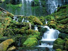 Imagens - Imagens de paisagens naturais