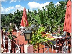 Casa Yolanda y Tomás. Terraza. Vinales, Home, Terrace