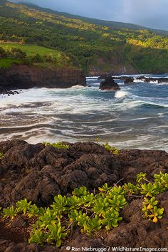 Ohe'o Gulch aka Seven Sacred Pools meets the Pacific Ocean, Haleakala National Park, Maui, Hawaii