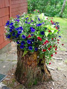Flower arrangement in log. Garden Yard Ideas, Diy Garden Decor, Garden Crafts, Garden Projects, Tree Stump Decor, Tree Stump Planter, Front Garden Landscape, Front Yard Landscaping, Small Backyard Gardens