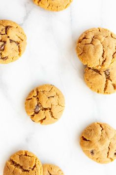 These Flourless Peanut Butter Chocolate Chip Cookies are naturally gluten-free and so easy to make! A few simple ingredients for a classic cookie recipe. Quick Cookies, Fall Cookies, Yummy Cookies, Christmas Cookies, Crazy Cookies, Fall Cookie Recipes, Delicious Cookie Recipes, Cookie Ideas, Dessert Recipes