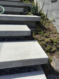 I wish I could take some credit for these gorgeous floating concrete stairs, but these were done as part of a remodel before I was lucky enough to be on site. I think these stairs were so well done! The deep cantilever helps aid in the illusion Outside Stairs, Front Stairs, Entry Stairs, Exterior Stairs, Outdoor Steps, Outdoor Landscaping, Shade Landscaping, Natural Landscaping, Landscaping Ideas