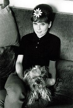 Audrey Hepburn and Mr. Famous ... Brought to you in part by StoneArtUSA.com ~ affordable custom pet memorials since 2001