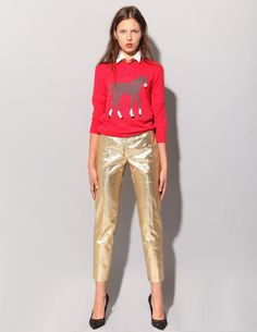 horses and gold pants