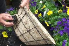How to make a hanging basket ideas