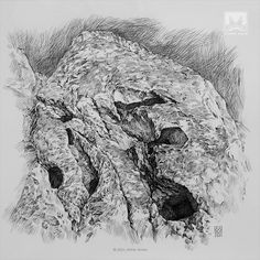 AFSHIN AMINI ART STUDIO | #AfshinAminiArt #PenAndInkDrawing #Sketchbook #Art #Drawing #Sketching #PenDrawing #InkDrawing Drawing Artist, Painting & Drawing, Ink Pen Drawings, Drawing Techniques, Ink Art, Prehistoric, Lion Sculpture, Sketching, Statue