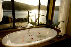 Elephant Hide of Knysna Guest Lodge offers luxury Knysna accommodation and is found on the beautiful Garden Route of South Africa…the hide to seek. | Holiday Houses SA