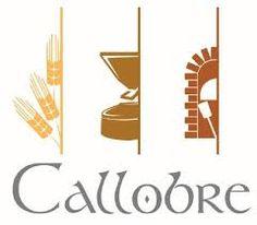 Resultado de imagen de trigo Callobre
