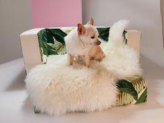 Banana Leaf Print Slip Cover for IKEA Pet Futon LURVIG