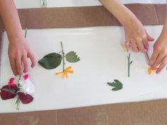 Creating with the parts of flowers