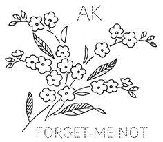 Alaska Forget-Me-Not by turkeyfeathers, via Flickr