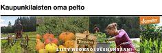 Biodynaamisesti viljeltyjä kasviksia Korsosta