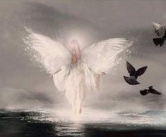 beautiful angel |